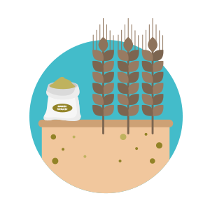 Sealac | Plant nutrition